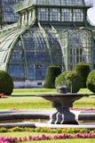 Gewächshaus am britischen Garten von Schoenbrunn Lizenzfreies Stockbild