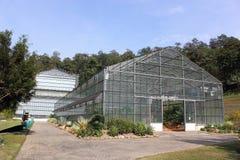 Gewächshaus in den botanischen Gärten Stockfotografie