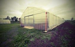 Gewächshaus für die Bearbeitung des Gemüses im PO-Tal herein Lizenzfreies Stockbild