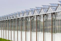 Gewächshausbau nahe Zoetermeer, die Niederlande lizenzfreie stockfotografie