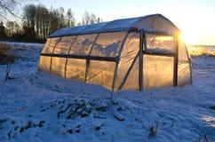 Gewächshaustreibhaus auf Bauernhoffeld auf Schnee und Wintersonnenaufgang Stockfoto