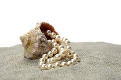Gewässerschnecke mit Perle Stockbilder