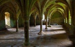 Gewölbte Decke des Kampfes Abbey East Sussex errichtet auf dem Standort des Kampfes Hastings Stockbilder