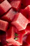 Gewürfelte Wassermelone Bio stockfotografie
