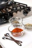 Gewürze benutzt beim Kochen Lizenzfreies Stockfoto