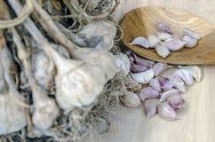 Gewürze, die Lebensmittelknoblauch essend kochen Lizenzfreie Stockfotos