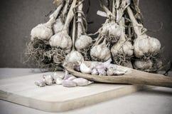 Gewürze, die Lebensmittelknoblauch essend kochen Stockbilder