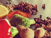 Gewürze, Gemüse und Kräuter Traditionelle italienische Küche Lizenzfreie Stockfotografie