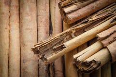Gewürze, natürliche Nahaufnahme Zimt Ceylons lizenzfreie stockfotografie