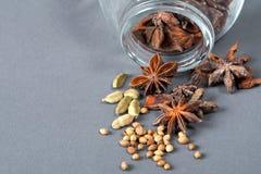 Gewürze, Sternanis, Kardamompflanze und Koriander. Stockfotografie