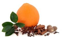 Gewürze und orange Frucht lizenzfreie stockbilder
