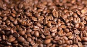 Gewürzte Kaffeebohnen Lizenzfreies Stockbild