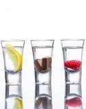 Gewürzte Wodkaschüsse Lizenzfreie Stockfotos