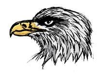 Gewaagde adelaar stock illustratie