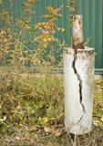 Gewapend beton pijler met een barst; stock afbeelding