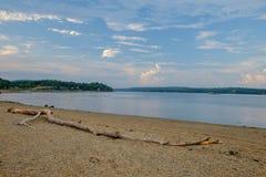 Gewaschenes Antriebholz verunreinigt den Strand auf dem Penobscot-Fluss in MA Lizenzfreie Stockfotos