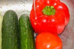 Gewassen groenten Groenten onder het lopende water in de zonde stock foto's