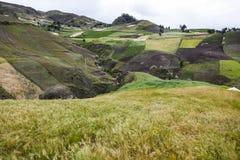 Gewassen van gerst en kleurrijke hellingen dichtbij Zumbahua stock afbeeldingen