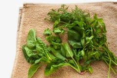 Gewassen verse greens op de keukenhanddoek, gezonde levensstijl, vriendschappelijke eco, ruw, veganistachtergrond, exemplaarruimt stock afbeeldingen