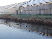 Gewächshäuser Westland Holland Stockfotos