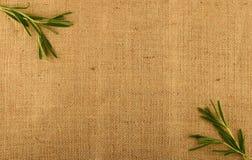 Gewebe aus Jute mit Rosmarinblättern in den Ecken Stockfoto