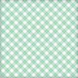 Gewebegrün und Lendenschurz, Hintergrund lizenzfreie abbildung