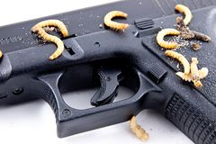 Gewehr mit Insekten Stockfoto