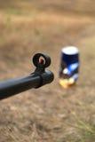 Gewehr und Ziel Stockfotografie