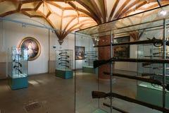 Gewehre im Schwerin-Schloss-Museum Lizenzfreies Stockbild