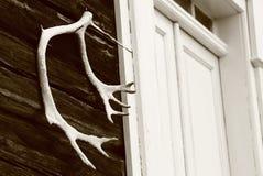 Geweihe nahe bei einer Haustür in Schweden lizenzfreie stockfotografie