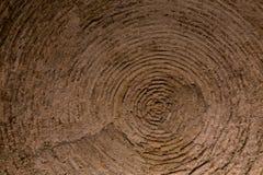 Gewelfd die plafond van bakstenen wordt gemaakt Stock Afbeeldingen