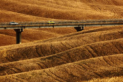 Gewellte breown kleine Hügel, Saufeld, Landwirtschaftslandschaft, Brücke mit zwei Autos, Naturteppich, Toskana, Italien Lizenzfreie Stockfotografie