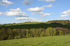 Gewellte Landschaft mit Bäumen und Wiesen, Tschechische Republik, Europa Stockbilder