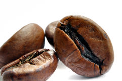 Gewesener Kaffee Lizenzfreie Stockfotografie
