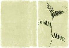 Geweven achtergrond met bloemenelementen Stock Foto