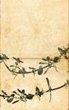 Geweven achtergrond met flora Stock Foto