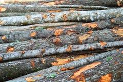 Geweven achtergrond van grote stapel van houten logboeken stock foto