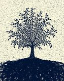 Geweven boom Stock Afbeelding