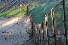 Geweven groene omheining en water stock foto's