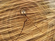 Geweven hout stock afbeelding
