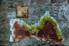 Geweven Muur Stock Foto