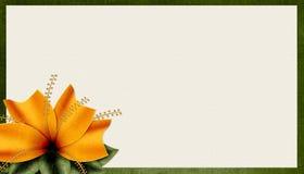 Geweven Oranje Achtergrond 2 van de Bloem Royalty-vrije Stock Foto's