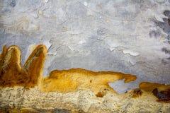 Geweven rotsachtergrond Stock Fotografie