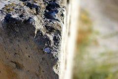 Geweven stenen macromening royalty-vrije stock foto's