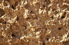 Geweven van een poreuze steen Stock Fotografie