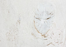 Geweven witte houten versleten oude achtergrond Stock Afbeeldingen