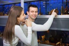 Gewöhnliche positive lächelnde Kunden, die tropische Fische vorwählen Stockfotografie