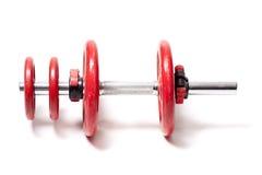 Gewichte für Gymnasts stockbild