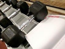 Gewichte und Buch Reihen von Dummköpfen auf einem Gestell lizenzfreie stockbilder