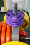 Gewichten, dumbells in de gymnastiek Stock Foto